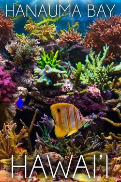 Hanauma Bay, Hawai'i - Fish and Coral 2 by Lantern Press