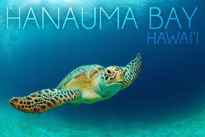 Hanauma Bay, Hawai'i - Sea Turtle by Lantern Press