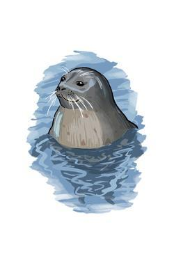 Harbor Seal - Icon by Lantern Press