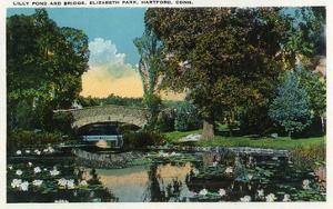 Hartford, Connecticut - Elizabeth Park Lily Pond and Bridge by Lantern Press