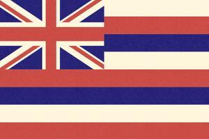 Hawaii State Flag by Lantern Press