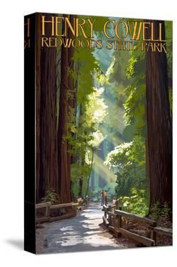 Henry Cowell Redwoods State Park - Pathway in Trees by Lantern Press