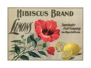 Hibiscus Brand - San Diego, California - Citrus Crate Label by Lantern Press