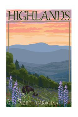 Highlands, North Carolina - Bear Family and Spring Flowers by Lantern Press