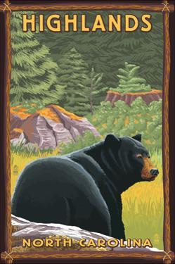 Highlands, North Carolina - Black Bear in Forest by Lantern Press