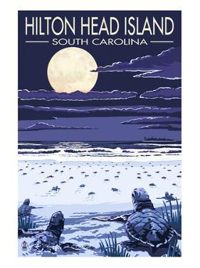 Hilton Head, South Carolina - Baby Turtles Hatching by Lantern Press