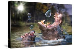 Hippos and Bubbles by Lantern Press