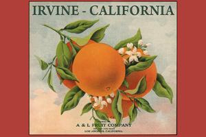 Irvine, California - Fruit Company Orange Label - Citrus Crate Label by Lantern Press