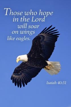 Isaiah 40:31 - Inspirational by Lantern Press