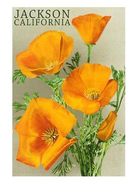 Jackson, California - The Californian Poppy Flowers by Lantern Press