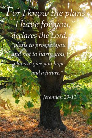 Jeremiah 29:11 - Inspirational by Lantern Press