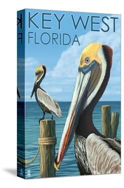 Key West, Florida - Brown Pelican by Lantern Press