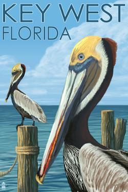 Key West, Florida - Brown Pelican by Lantern Press