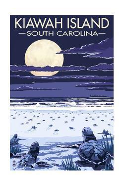 Kiawah Island, South Carolina - Sea Turtles Hatching by Lantern Press