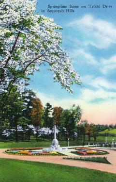 Knoxville, Tennessee - Springtime Scene on Talahi Drive in the Sequoyah Hills by Lantern Press