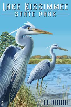 Lake Kissimmee State Park, Florida - Blue Herons by Lantern Press