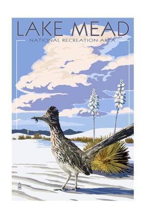Lake Mead - National Recreation Area - Roadrunner