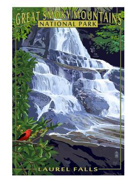 Laurel Falls - Great Smoky Mountains National Park, TN by Lantern Press