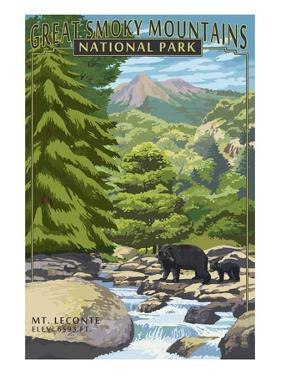 Leconte Creek and Mt. Leconte - Great Smoky Mountains National Park, TN by Lantern Press