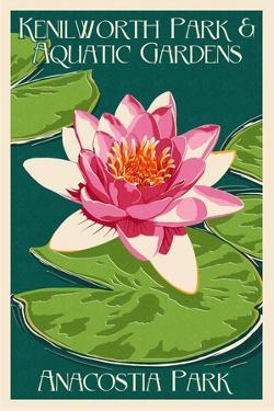 Lily Pad and Lotus - Kenilworth Aquatic Gardens by Lantern Press