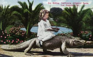 Los Angeles, California - Girl Riding Alligator at the Farm by Lantern Press