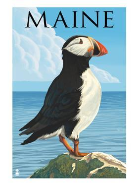 Maine - Puffin on Rock Scene by Lantern Press