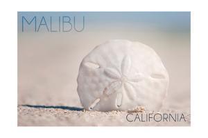 Malibu, California - Sand Dollar and Beach by Lantern Press