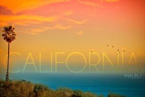 Malibu, California - Sunset and Birds by Lantern Press