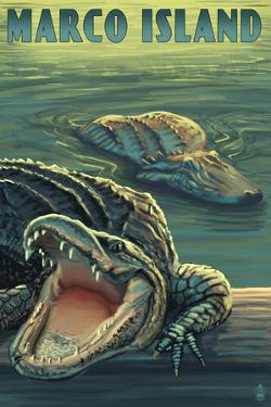 Marco Island - Alligators by Lantern Press