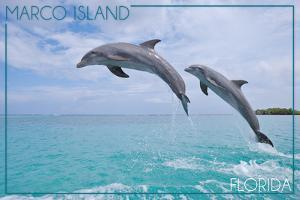 Marco Island, Florida - Jumping Dolphins by Lantern Press