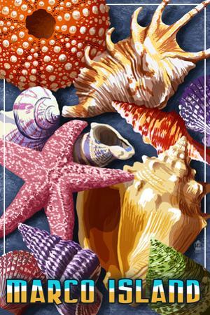 Marco Island - Shells by Lantern Press