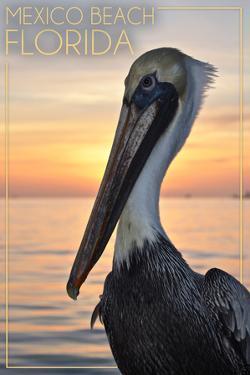 Mexico Beach, Florida - Pelican by Lantern Press