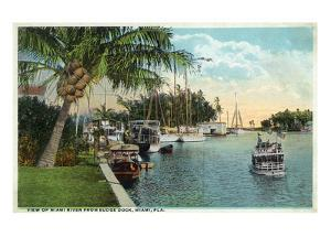 Miami, Florida - Miami River from Budge Dock by Lantern Press