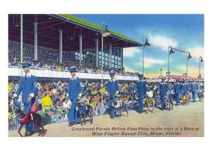 Miami, Florida - West Flagler Kennel Club Greyhound Parade before Race by Lantern Press