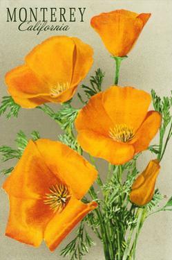 Monterey, California - State Flower - Poppy Flowers by Lantern Press