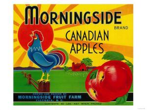 Morningside Apple Label - Canada by Lantern Press