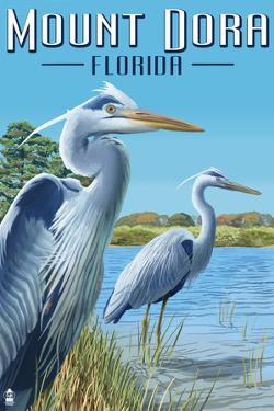 Mount Dora, Florida - Blue Herons by Lantern Press
