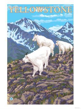 Mountain Goats Scene, Yellowstone National Park by Lantern Press