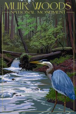Muir Woods National Monument, California - Blue Heron by Lantern Press