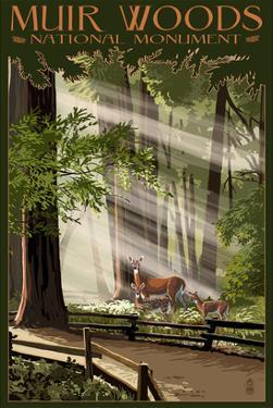 Muir Woods National Monument, California - Deer and Fawns by Lantern Press