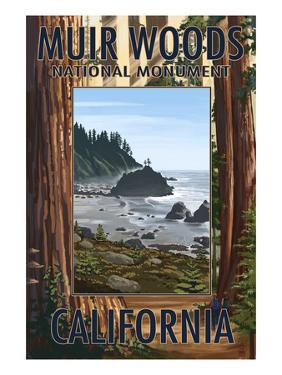 Muir Woods National Monument, California - Trees and Ocean by Lantern Press
