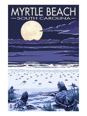 Myrtle Beach, South Carolina - Baby Sea Turtles by Lantern Press
