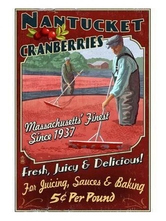 Nantucket, Massachusetts - Cranberry Farm by Lantern Press