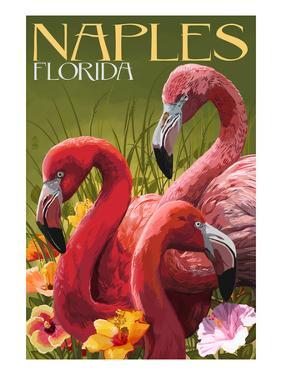 Naples, Florida - Flamingos by Lantern Press