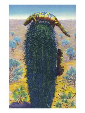 New Mexico - View of Gila Monsters on Cactus by Lantern Press