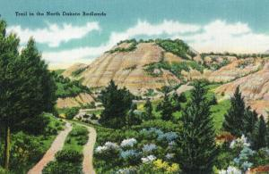North Dakota, T. Roosevelt National Park View of a Scenic Trail in the Badlands by Lantern Press
