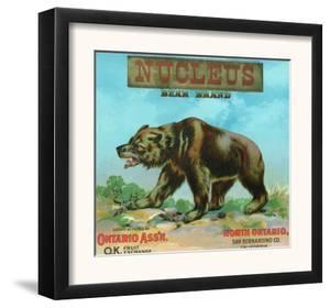 North Ontario, California, Nucleus Bear Brand Citrus Label by Lantern Press