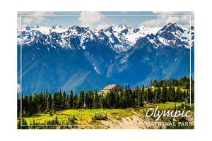 Olympic National Park - Hurricane Ridge Visitor Center by Lantern Press