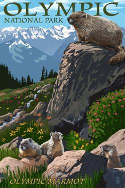 Olympic National Park - Marmots by Lantern Press