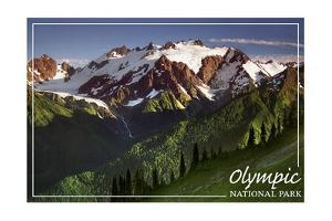 Olympic National Park - Mount Olympus by Lantern Press